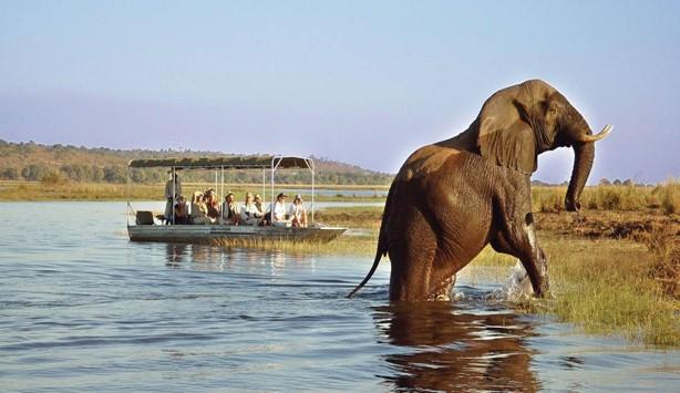 Botswana Chobe National Parks