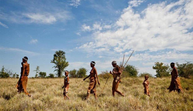 Chobe National Park Bush Walk