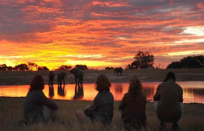 Chobe National Park Vital Information