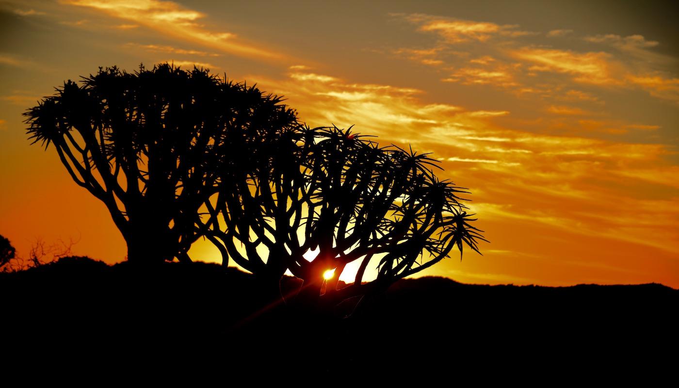 sunset - Etosha National Park