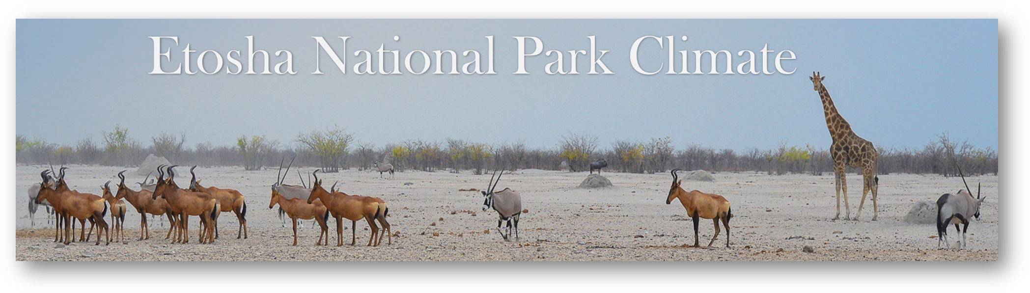 Etosha National Park Climate-weather
