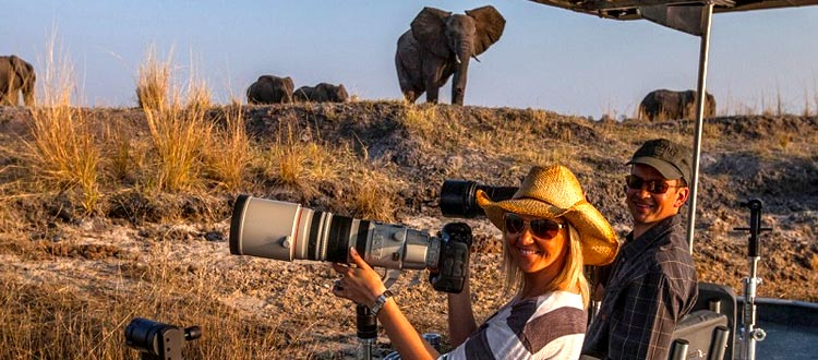Photographic Safaris chobe