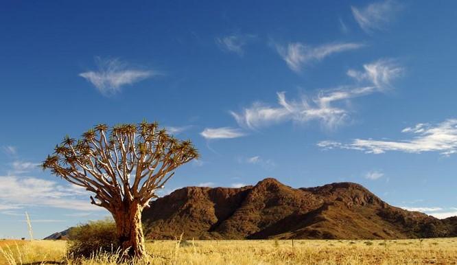 Vital Information - Etosha National Park