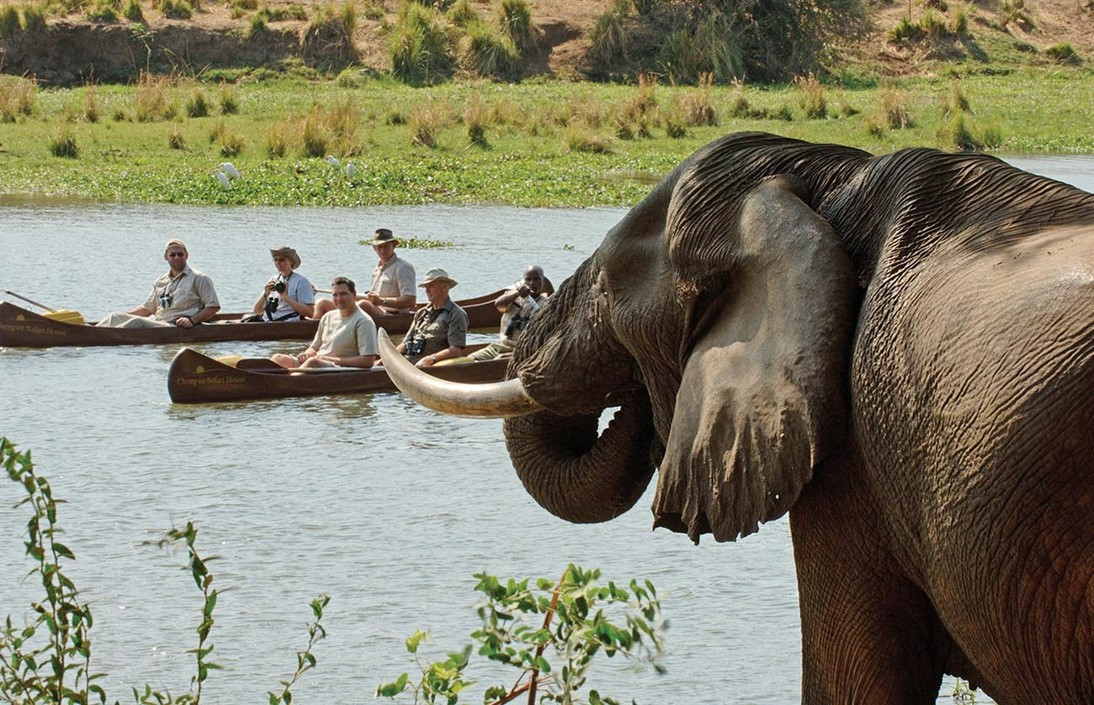 south luangwa safaris classic beach bush tour travel africa explore